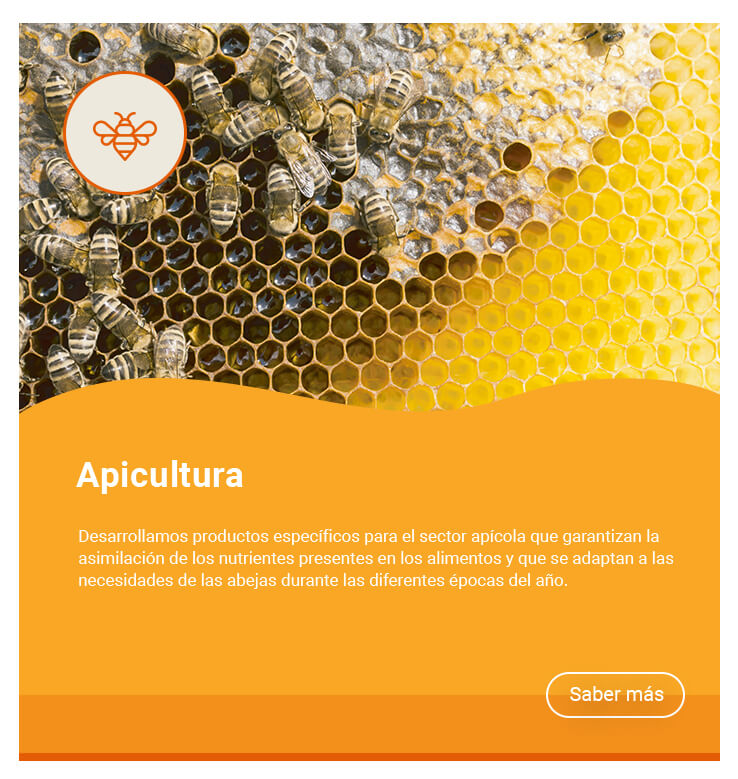 apicultura-dadelosagricola.com