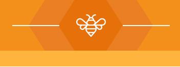 apicultura-1-dadelosagricola.com