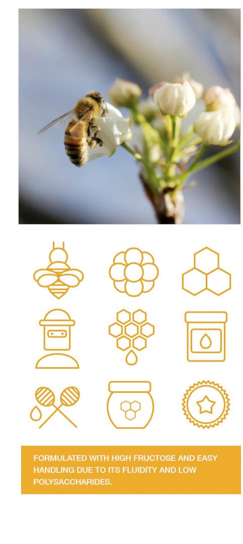 fructobee-energy